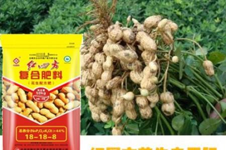 有機肥料與無機肥料紅四方花生專用肥 (3)