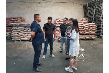 中国花生交易网—2020江苏东海产区调研
