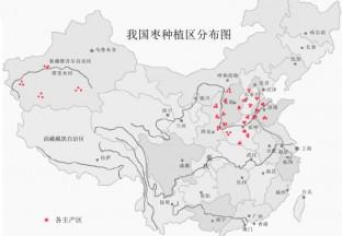 中国大枣种植分布图 ()