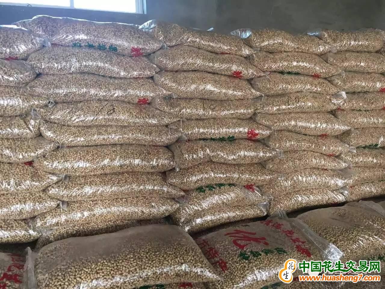 大量供應白沙羅漢果 ()