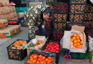 山东济宁:时令水果物美价…