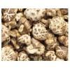 求购香菇.黑木耳.银耳.松茸.羊肚菌.竹荪.猴头菇.灵芝