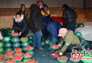 甘肃天水: 春节前水果市场…