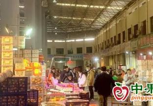 浙江义乌:春节水果价格低于往年 ()