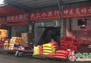 湖南长沙:水果市场日销6000到8000吨 ()