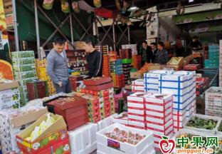 广东中山:春节期间水果批发市场销量大涨 ()
