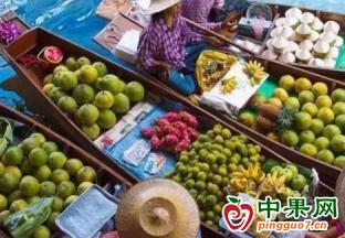 2020年泰国对中国水果出口量继续增加 ()