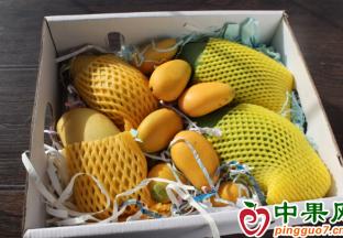 江苏无锡:时令水果轮番上市 ()