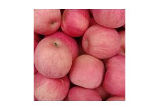 求購紅富士蘋果