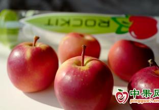 首批乐淇苹果抵运北京新发…