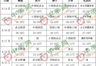 果農套袋農忙 周內降雨增多 ()