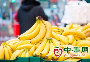6月進口蕉價格環比同比均上漲 ()