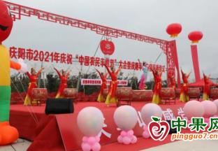 甘肃庆阳:2021年苹果开园…