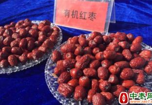 阿瓦提村:种有机枣 生活更甜 ()