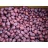 6吨新疆和田灰枣供应